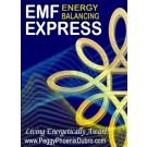 WEBINAR SERIES: EMF Energy Balancing Express Online Certification Training (English/Russian)