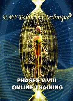 EMF BALANCING TECHNIQUE® ONLINE TRAINING: The Universal Calibration Lattice® (UCL) Workshop & Phases V-VIII Training (English/Spanish)