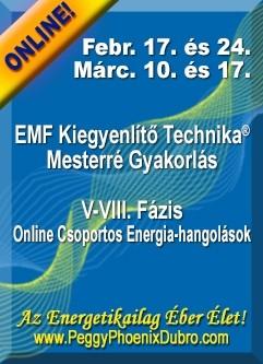 ENERGIA-HANGOLÁS SOROZAT: EMF Kiegyenlítő Technika® Mesterré Gyakorlás V-VIII. Fázis Csoportos Energia-hangolások (Magyar)