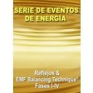 SERIE DE EVENTOS DE ENERGÍA: Reflejos y Fases I & IV de la EMF Balancing Technique® - Eventos de Energía (Español/Inglés)